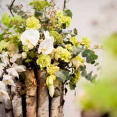 fi-transilvania-wedding-fair-cluj