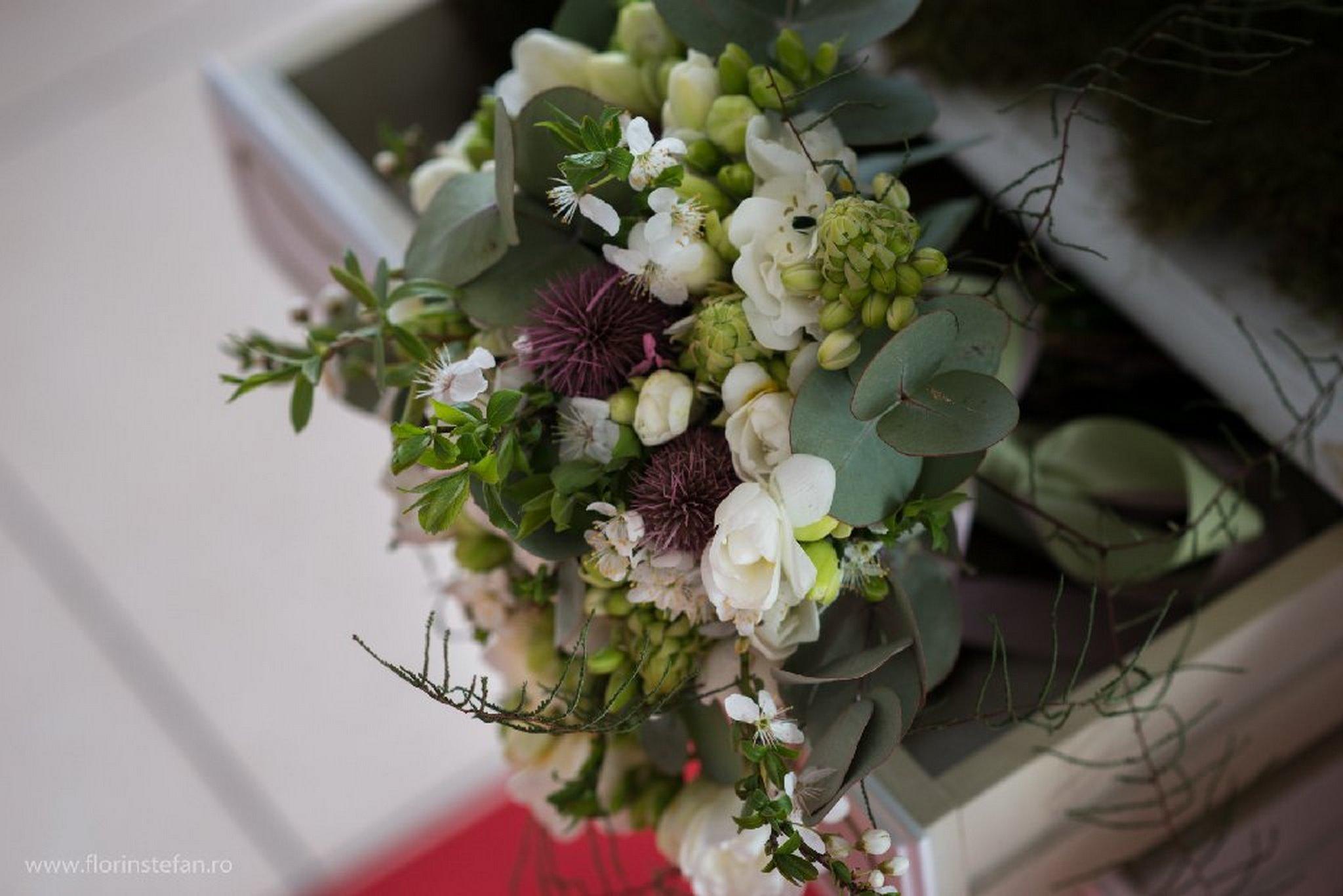 agentie decor nunta craiova event fever