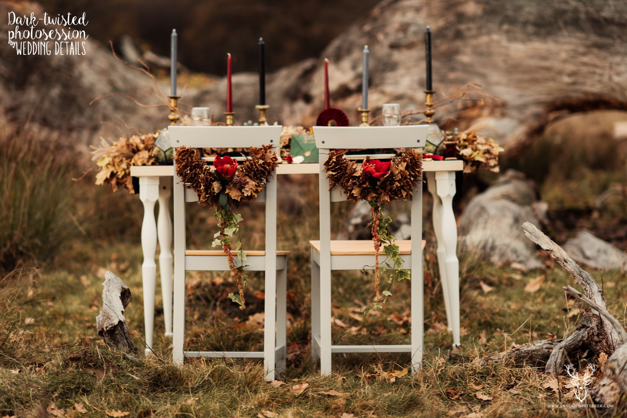 detaliile nuntii wedding details